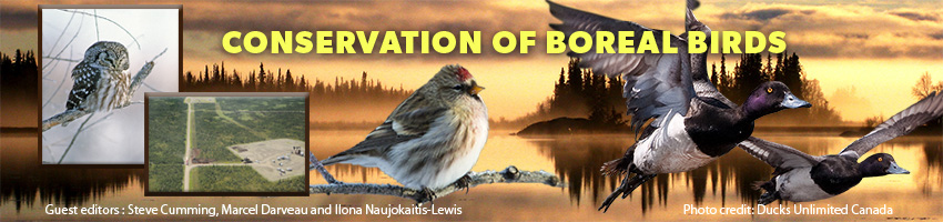 Conservation of Boreal Birds